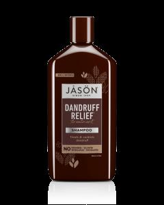 Jason Dandruff Relief Treatment Shampoo, 12 fl. oz.